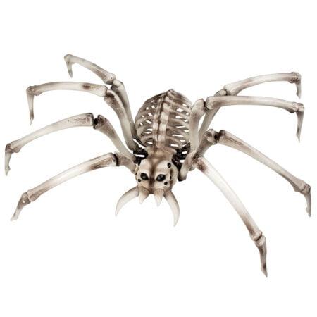 Stort Spindelskelett Prop
