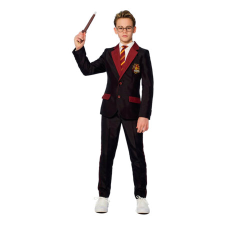 Suitmeister Teen Harry Potter Gryffindor Kostym - Small