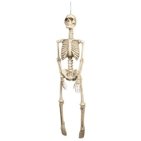 Prop, skelett 92 cm